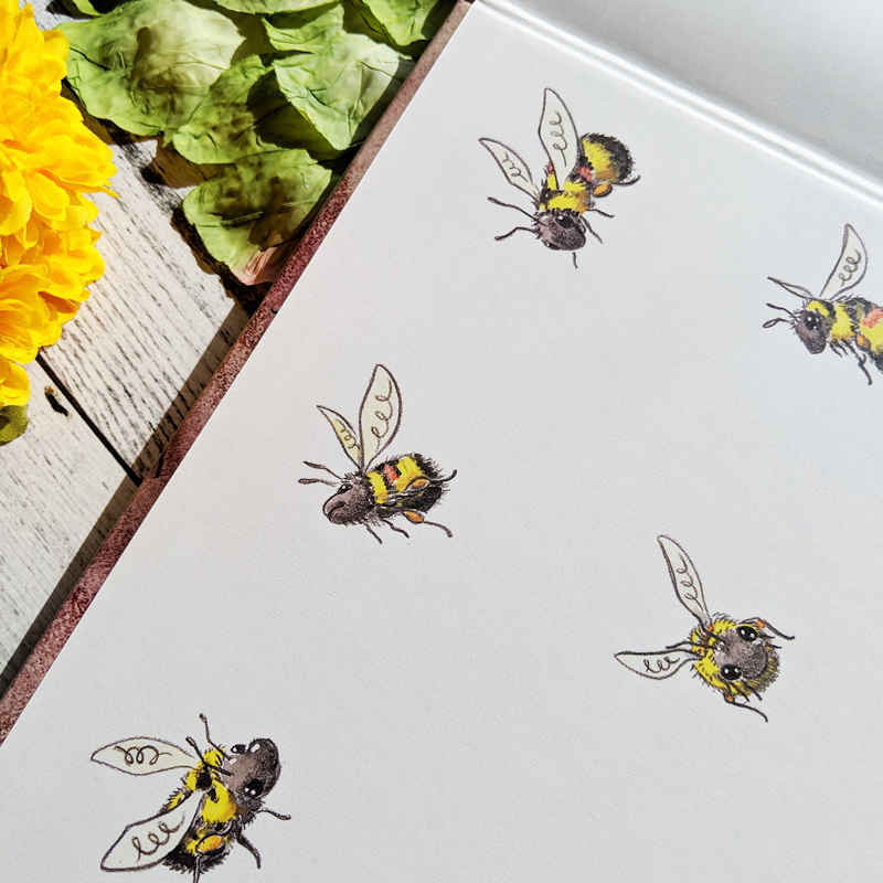 Illustrations of bees