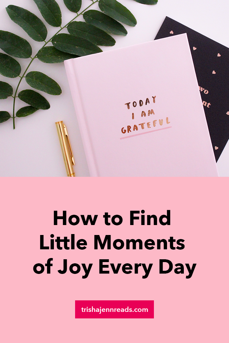 How to find little moments of joy every day on trishajennreads | a photo of a gratefulness journal
