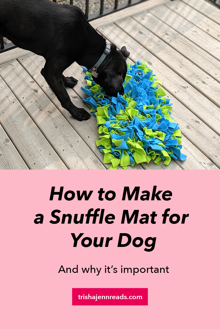 How to make a snuffle mat for your dog and why it's important | Image: a black dog eating off a blue and green snuffle mat
